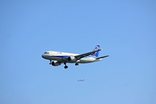 ANA/NH A320 JA8395