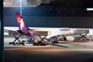 HA/HAL/ハワイアン航空 A330