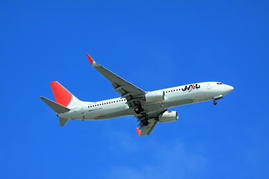 JL/JAL/日本航空 B737-800