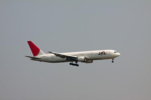 JL/JAL/日本航空 B767-300 JA8975