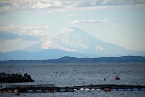 三浦半島越しに富士山