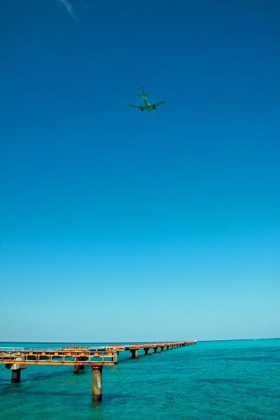 エメラルドグリーンの海をバックに訓練するスーパードルフィン