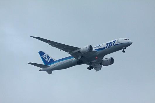NH/ANA/全日空 B787 JA816A