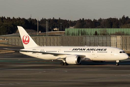 JL/JAL/日本航空  B787-8 JA830J