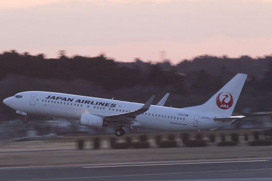 JL/JAL/日本航空  B737-800 JA825J