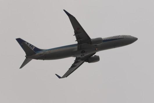 NH/ANA/全日空  B737-800 JA61AN