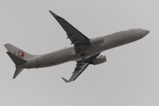 JL/JAL/日本航空  B737-800 JA302J