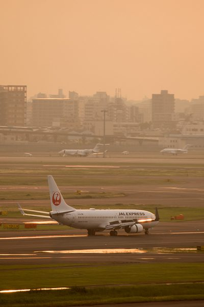 JL/JAL/日本航空  B737-800 JA344J