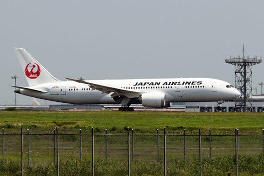 JL/JAL/日本航空 JL20 B787-8 JA831J