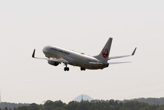 JL/JAL/日本航空 JL482 B737-800 JA314J