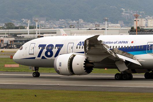 NH/ANA/全日空  B787-8 JA817A