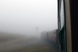霧で視界がまったく悪い