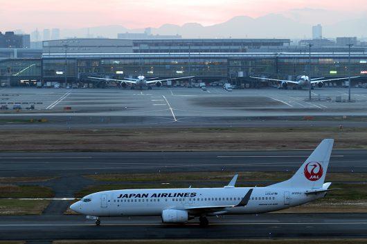 JL/JAL/日本航空 JL260 B737-800 JA334J
