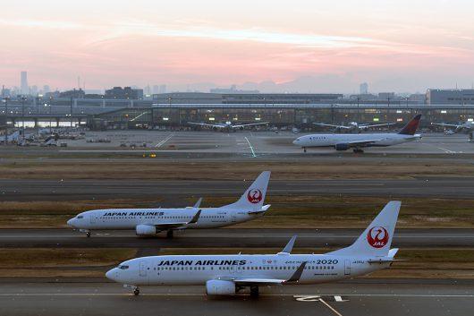 JL/JAL/日本航空 JL239 B737-800 JA350J