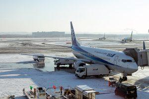 新千歳空港と言えども湿り雪には弱い
