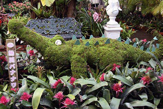 熱川バナナワニ園 本園植物園