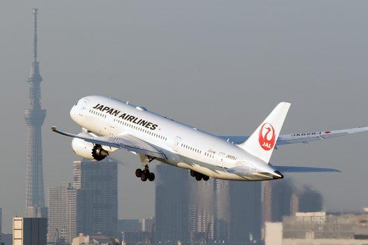 JL/JAL/日本航空 B787-8 JA828J
