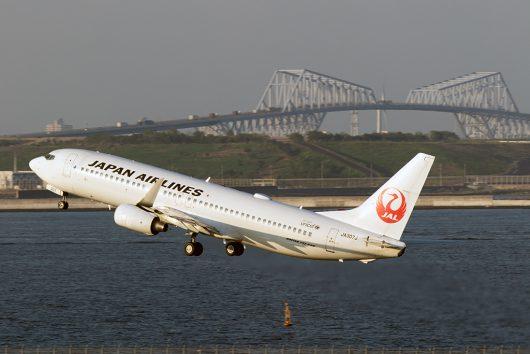 JL/JAL/日本航空  B737-800 JA307J