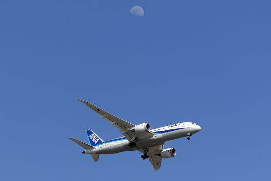 NH/ANA/全日空  B787-8 JA834A