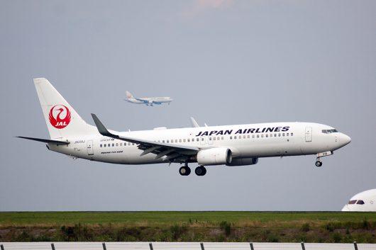 JL/JAL/日本航空  B737-800 JA318J