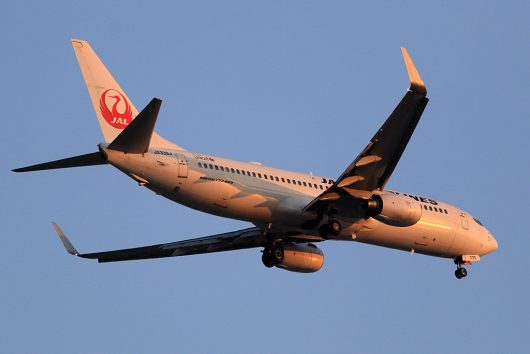 JL/JAL/日本航空  B737-800 JA339J