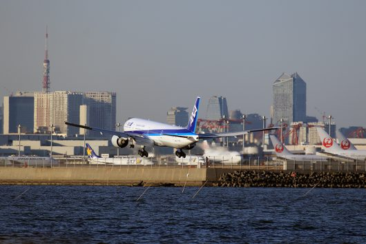 NH/ANA/全日空  B777-300ER JA736A
