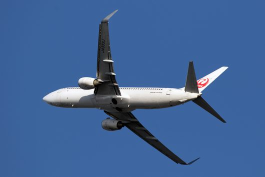 JL/JAL/日本航空 JL147 B737-800 JA333J