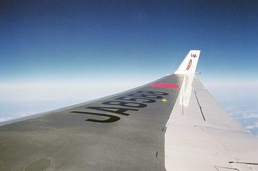 JALのMD11 JA8588 オジロワシ