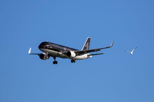 7G/SFJ/スターフライヤー 7G80 A320 JA21MC