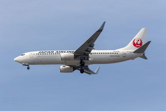 JL/JAL/日本航空  B737-800 JA341J
