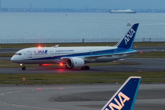 NH/ANA/全日空  B787-8 JA816A