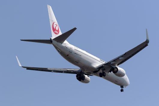 JAL B737-800 JA316J