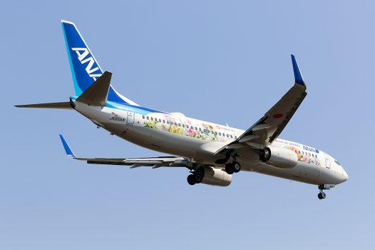 ANA B737-800 JA85AN フラワージェット