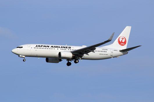 JL/JAL/日本航空 JL480 B737-800 JA331J
