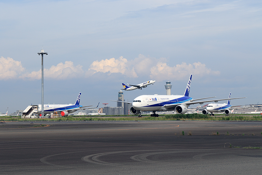 多くの機体が羽田空港でストア状態になっている