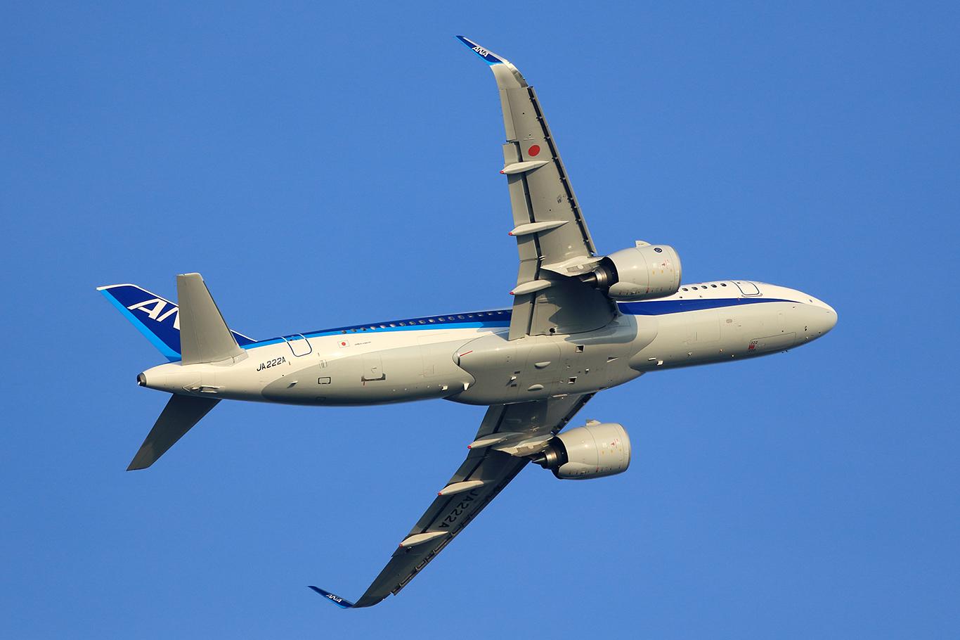NH/ANA/全日空 NH537 A320Neo JA222A