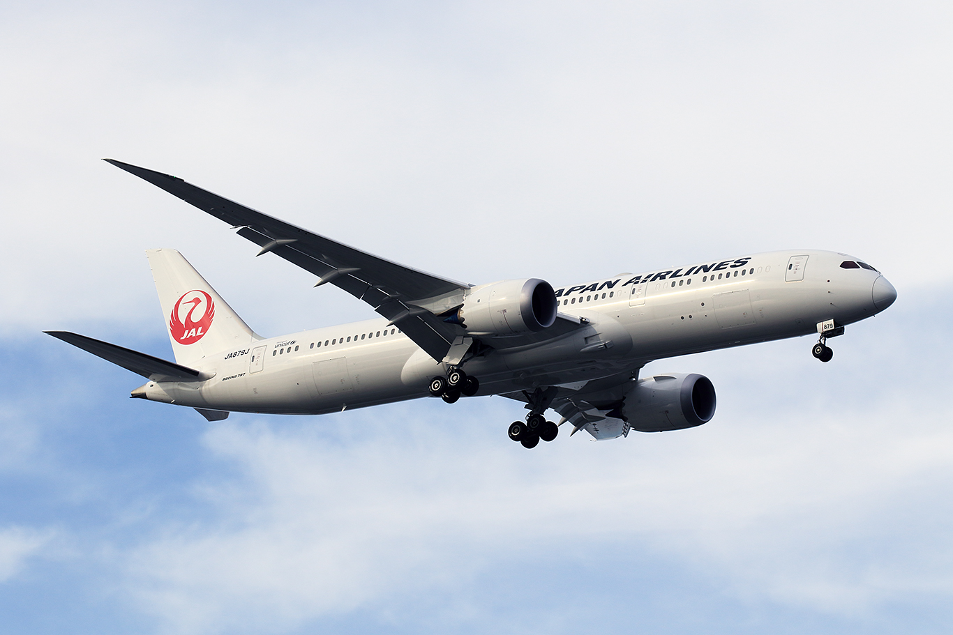JL/JAL/日本航空 JL542 B737-800 JA301J