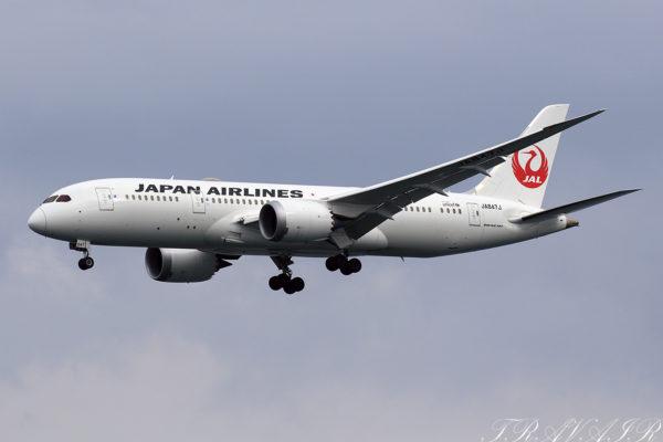 JL/JAL/日本航空 JL118 B787-8 JA847J