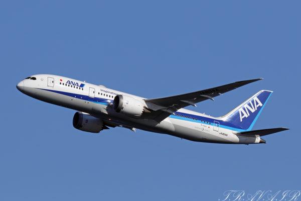 NH/ANA/全日空 NH67 B787-8 JA804A