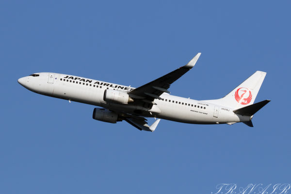 JL/JAL/日本航空 JL611 B737-800 JA318J