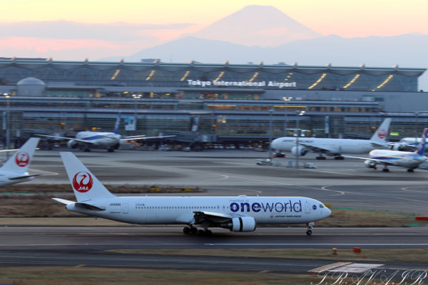 JL/JAL/日本航空 JL992 B767-300 JA8980