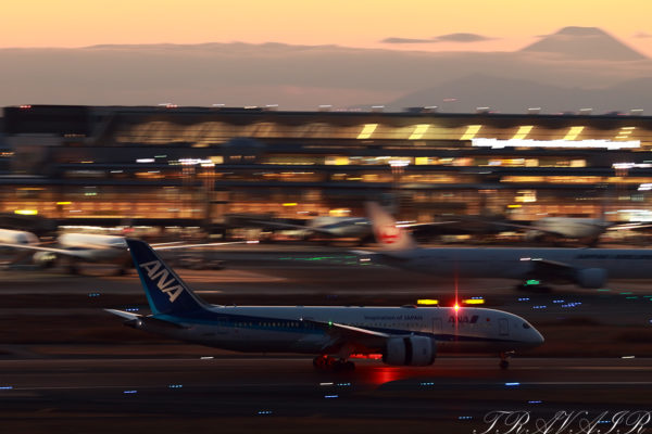 NH/ANA/全日空 NH568 B787-8 JA816A