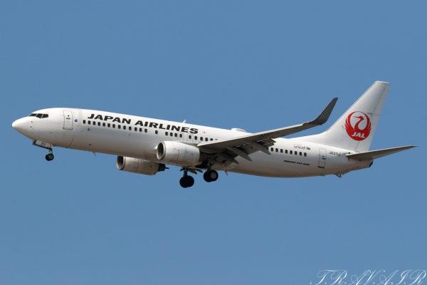 JL/JAL/日本航空 JL434 B737-800 JA311J
