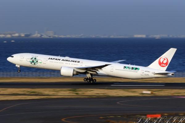 JL/JAL/日本航空 JL6775 B777-300ER JA734J