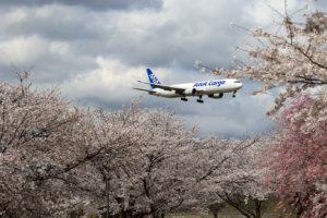 NH/ANA/全日空 B777-F
