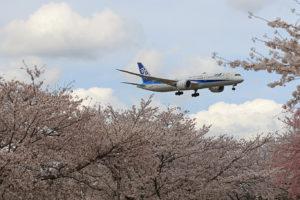 NH/ANA/全日空 B787-9