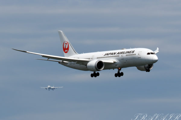 JL/JAL/日本航空 JL46 B787-8 JA838J