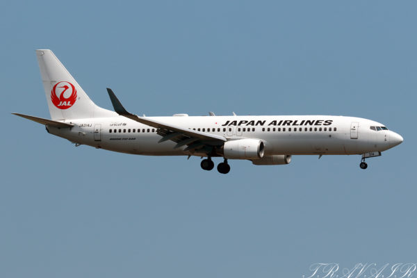 JL/JAL/日本航空 JL236 B737-800 JA314J