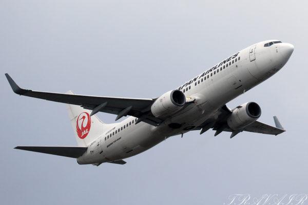 JL/JAL/日本航空 JL461 B737-800 JA311J