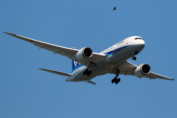 NH/ANA/全日空 NH252 B787-8 JA808A